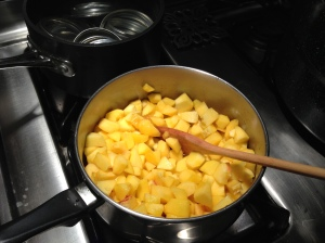Begin cooking process by adding a bit of water to fruit