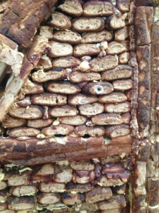 Close Up of Bread House Wall